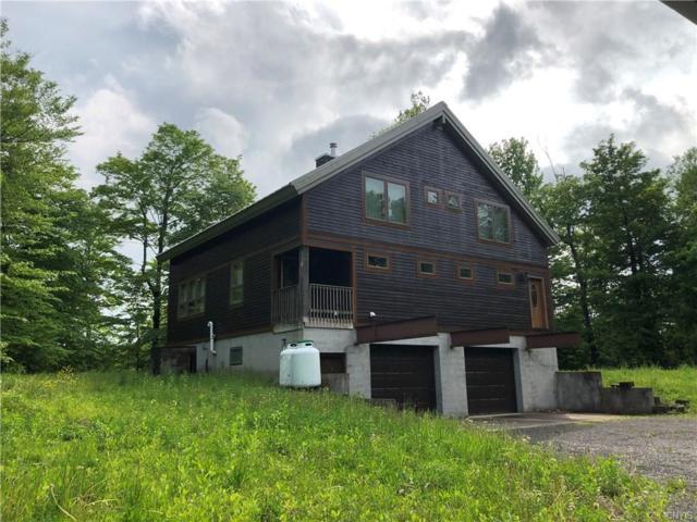 287 Harvester Mill Road, Redfield, NY 13437 (MLS #S1198680) :: The Chip Hodgkins Team