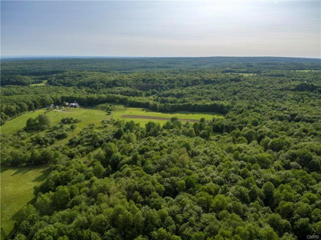0 Statzer Road, Lewis, NY 13489 (MLS #S1205995) :: Thousand Islands Realty