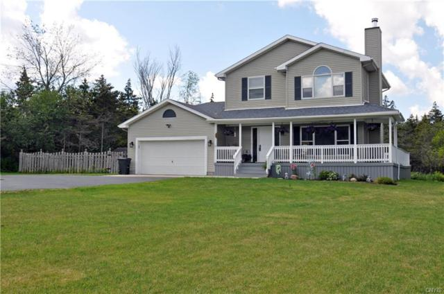 23929 Pheasant Run, Pamelia, NY 13601 (MLS #S1216019) :: Robert PiazzaPalotto Sold Team