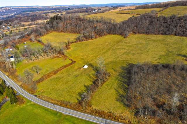 0 State Route 167, Little Falls-Town, NY 13365 (MLS #S1235846) :: Robert PiazzaPalotto Sold Team