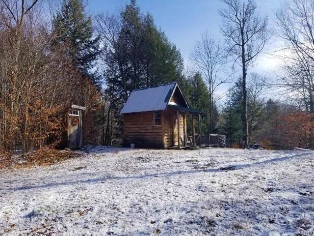 0 Meyers Hill, Forestport, NY 13338 (MLS #S1237213) :: Robert PiazzaPalotto Sold Team