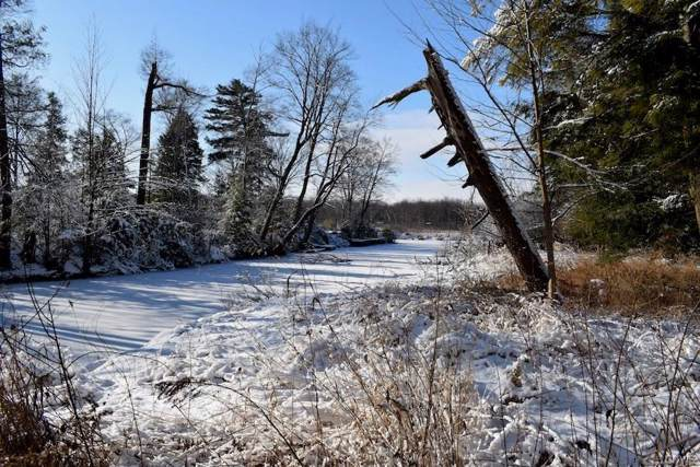 Off State Route 3, Sandy Creek, NY 13145 (MLS #S1245915) :: Robert PiazzaPalotto Sold Team