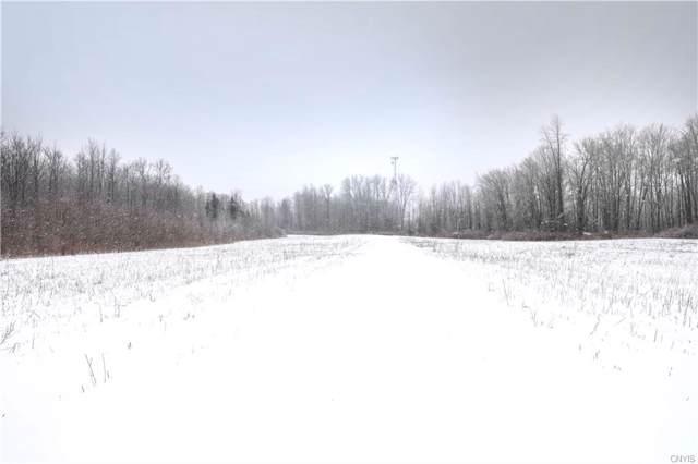 32 acres Route 31, Sullivan, NY 13037 (MLS #S1247778) :: The Chip Hodgkins Team
