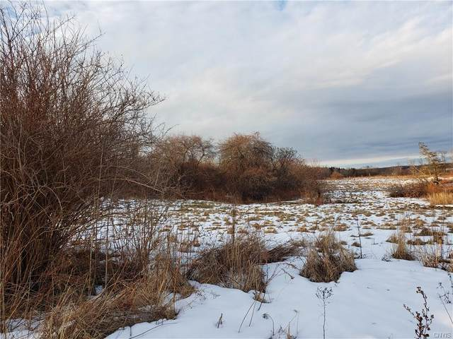 6547 State Route 3, Mexico, NY 13114 (MLS #S1249451) :: BridgeView Real Estate Services