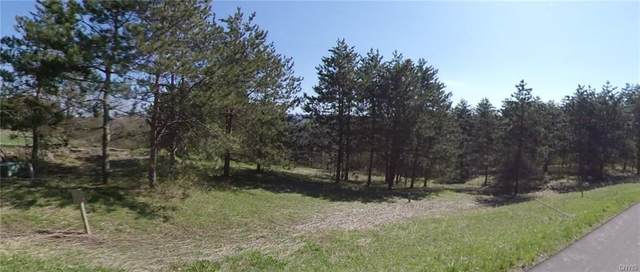0 Route 80, Tully, NY 13159 (MLS #S1250286) :: 716 Realty Group