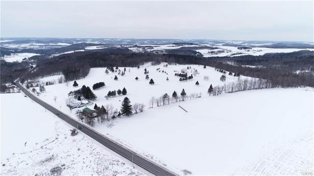 3635 State Route 80, Sherburne, NY 13460 (MLS #S1251223) :: MyTown Realty