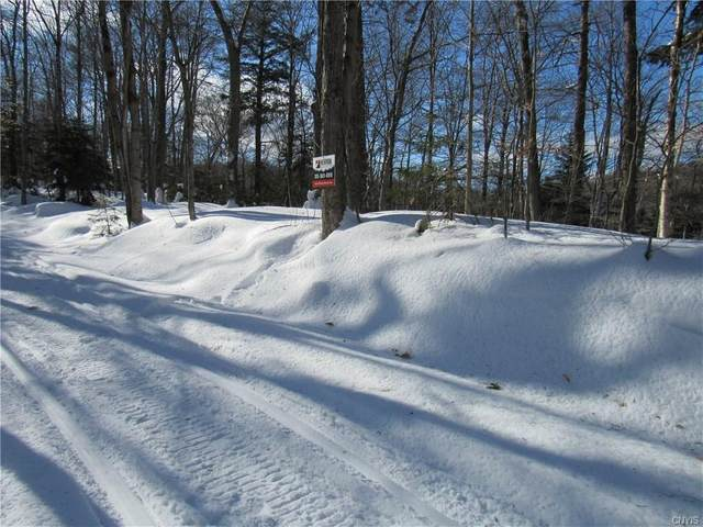 0 Palisades Road, Webb, NY 13420 (MLS #S1252173) :: The CJ Lore Team | RE/MAX Hometown Choice