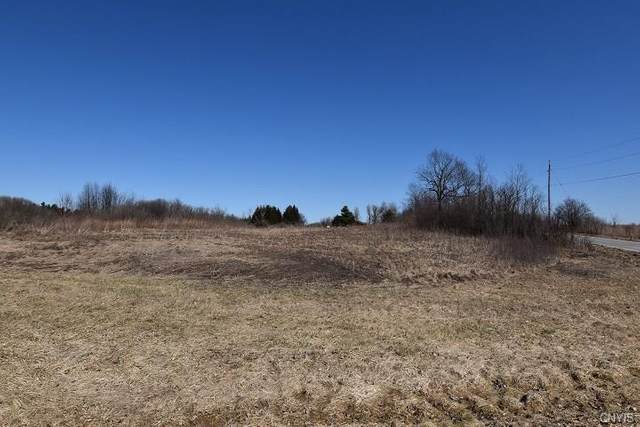 0 Coolidge Road, Antwerp, NY 13608 (MLS #S1252810) :: MyTown Realty