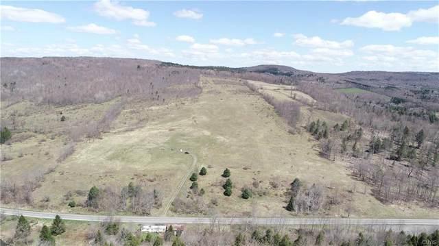 0 State Highway 80, Smyrna, NY 13464 (MLS #S1255739) :: MyTown Realty