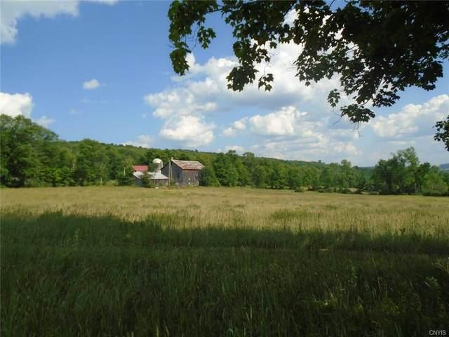 537 County Road 4, Preston, NY 13830 (MLS #S1258306) :: Lore Real Estate Services