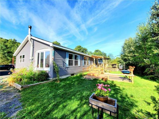 1709 Chapin Road, Georgetown, NY 13072 (MLS #S1263241) :: Robert PiazzaPalotto Sold Team