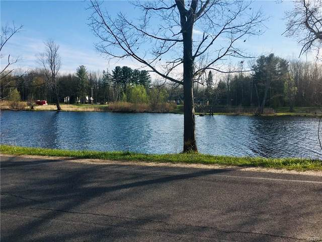 00 Oneida River Road, Schroeppel, NY 13135 (MLS #S1263340) :: MyTown Realty