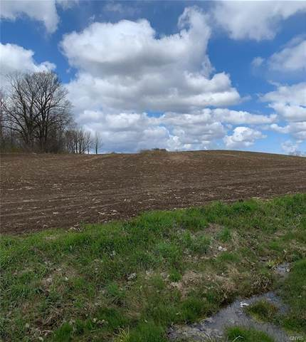 0 State Route 26 - Lot 3, Lowville, NY 13367 (MLS #S1263912) :: The Chip Hodgkins Team