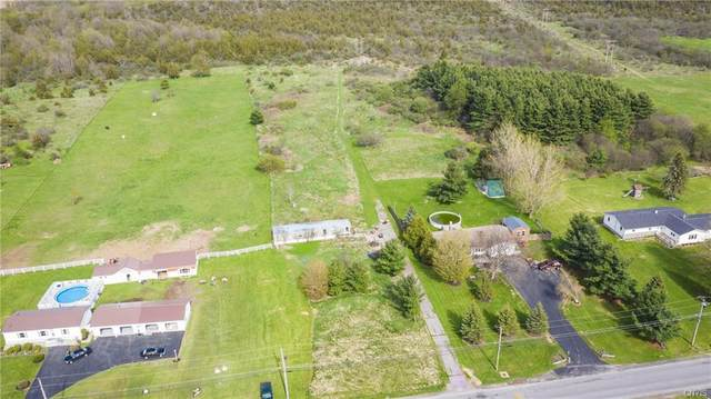 23424 County Route 32, Pamelia, NY 13601 (MLS #S1265461) :: BridgeView Real Estate Services