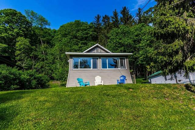 370 W Lake Road, Fabius, NY 13052 (MLS #S1266225) :: The Chip Hodgkins Team