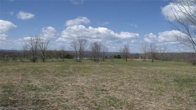 0 Cogar Drive, Schuyler, NY 13340 (MLS #S1272587) :: Lore Real Estate Services