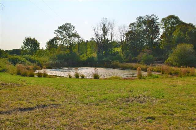 Lot 1 Skaneateles Turnpike, Plainfield, NY 13491 (MLS #S1275551) :: Serota Real Estate LLC