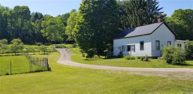 3996 State Highway 205, Hartwick, NY 13348 (MLS #S1276531) :: Thousand Islands Realty