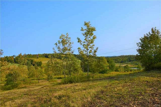Lot 4 Skaneateles Turnpike, Plainfield, NY 13491 (MLS #S1277366) :: MyTown Realty