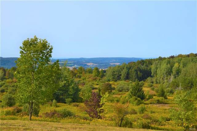 Lot 5 Skaneateles Turnpike, Plainfield, NY 13491 (MLS #S1277387) :: MyTown Realty