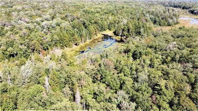 00 Perkins Mill Road, Salisbury, NY 13454 (MLS #S1282806) :: BridgeView Real Estate Services