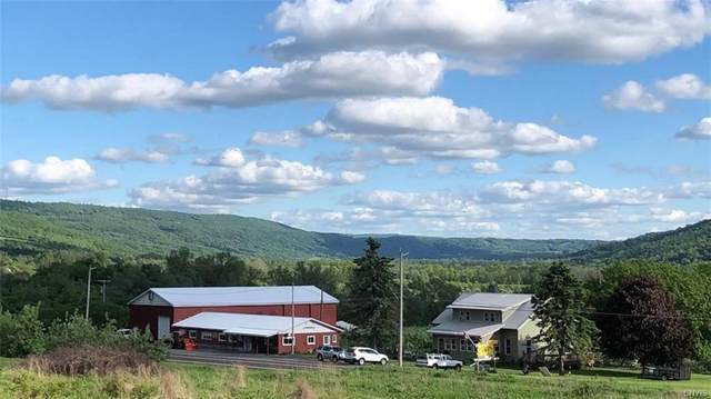 2695 State Route 11A, Lafayette, NY 13084 (MLS #S1283408) :: MyTown Realty