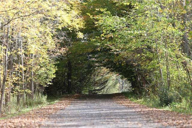 1665 Yuhas Lot #7 Drive, Sterling, NY 13156 (MLS #S1285085) :: BridgeView Real Estate Services