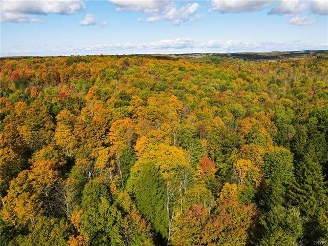 1665 Yuhas Lot #8 Drive, Sterling, NY 13156 (MLS #S1285088) :: BridgeView Real Estate Services