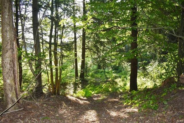 Lot 7 Tamblin Ridge Trail, Constantia, NY 13044 (MLS #S1286851) :: Mary St.George | Keller Williams Gateway