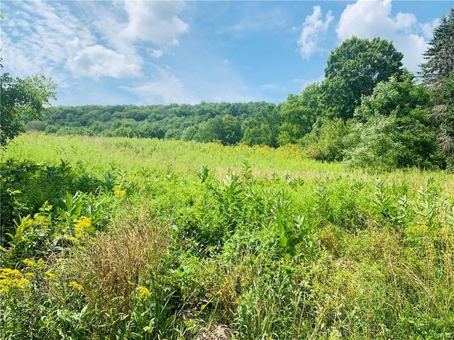0 Foulds Rd. Road, Pitcher, NY 13136 (MLS #S1287014) :: Lore Real Estate Services