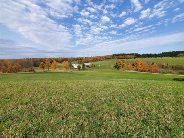 312 Springer Road, Lincklaen, NY 13052 (MLS #S1287973) :: MyTown Realty