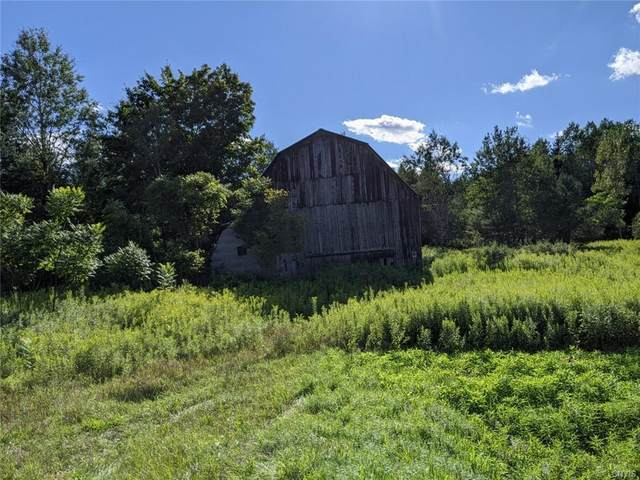 111 State Route 12, Leyden, NY 13433 (MLS #S1288261) :: Lore Real Estate Services