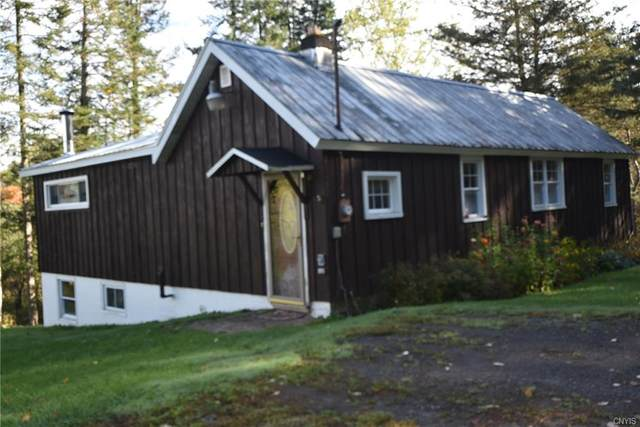 25197 County Route 93, Worth, NY 13659 (MLS #S1288384) :: BridgeView Real Estate Services