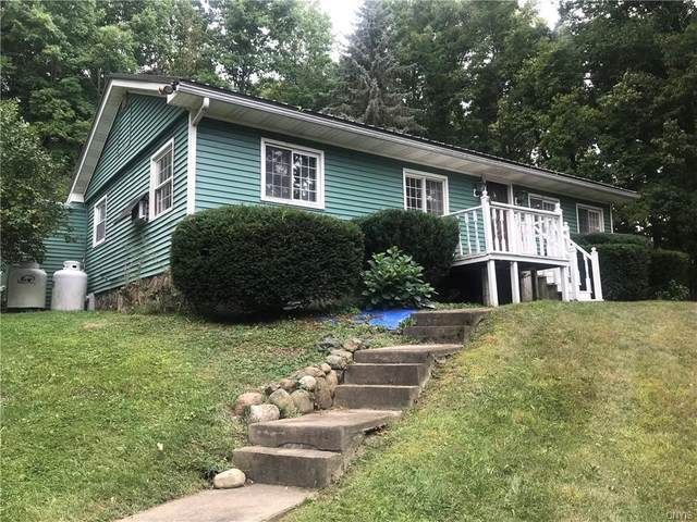 356 Nye Rd, Virgil, NY 13045 (MLS #S1291901) :: Lore Real Estate Services