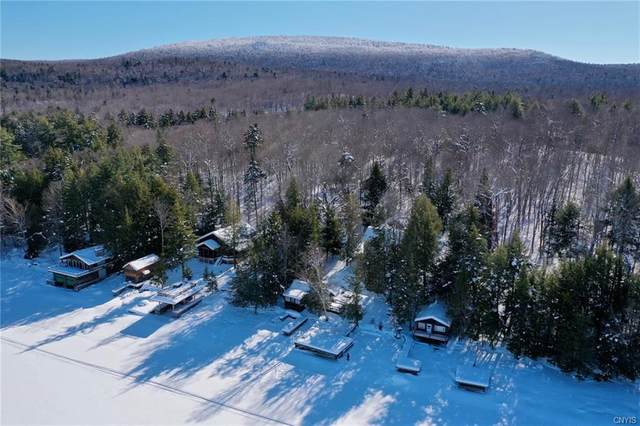 525 State Route 28, Inlet, NY 13360 (MLS #S1297319) :: MyTown Realty