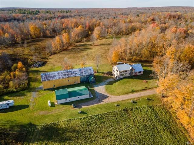 3901 Schibley Road, West Turin, NY 13325 (MLS #S1301827) :: Mary St.George | Keller Williams Gateway