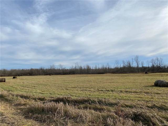 00 Game Farm Road Extension, Brownville, NY 13615 (MLS #S1307165) :: BridgeView Real Estate Services