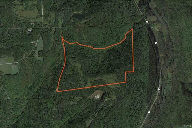 Lot 2 Valley View Road, Richford, NY 13835 (MLS #S1310223) :: BridgeView Real Estate Services