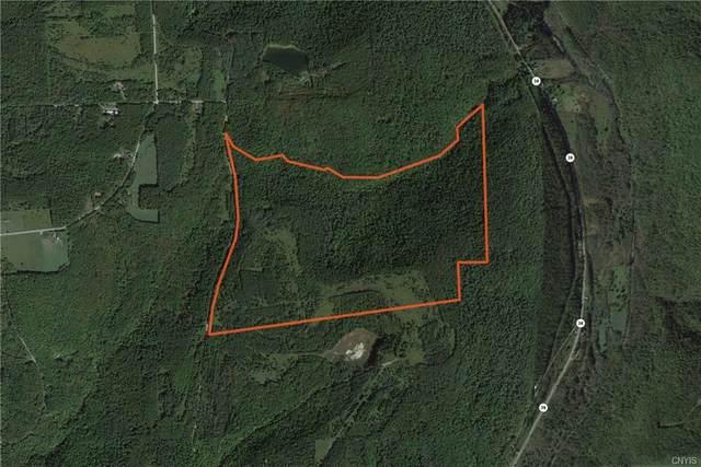 Lot 2 Valley View Road, Richford, NY 13835 (MLS #S1310223) :: TLC Real Estate LLC