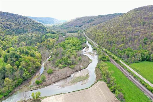 3887 County Route 119, Canisteo, NY 14819 (MLS #S1319803) :: Robert PiazzaPalotto Sold Team