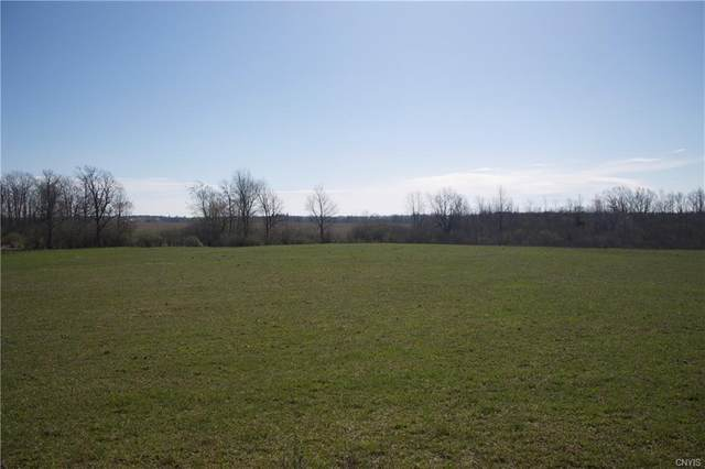 8559 County Route 125, Lyme, NY 13622 (MLS #S1320170) :: Thousand Islands Realty