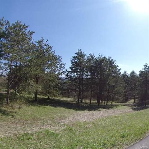 0 Route 80, Tully, NY 13159 (MLS #S1321361) :: BridgeView Real Estate