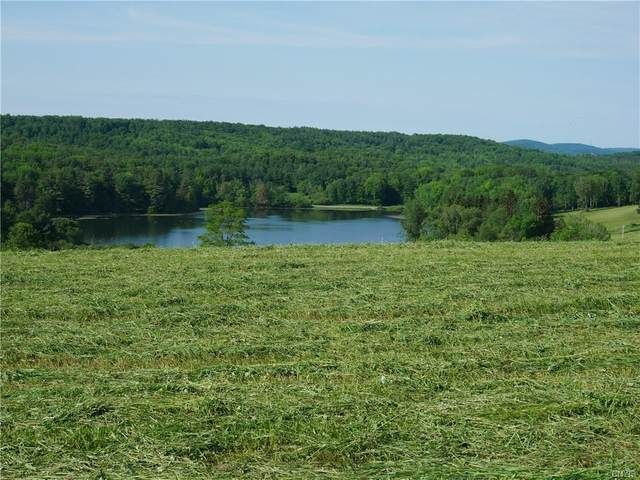 7995 Bailey Lake Road, Sangerfield, NY 13480 (MLS #S1330302) :: Robert PiazzaPalotto Sold Team