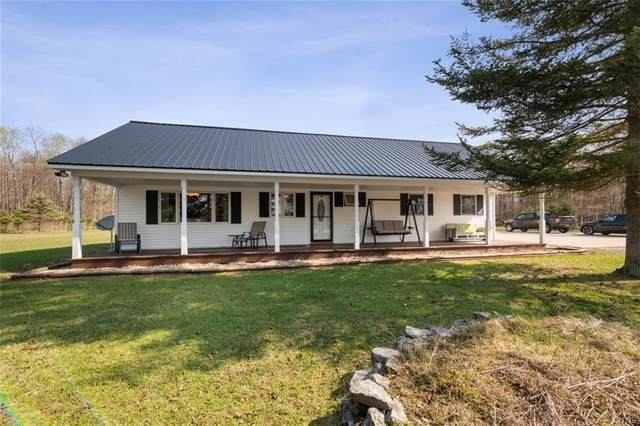 21 Perch Pond Road, Forestport, NY 13338 (MLS #S1330373) :: 716 Realty Group