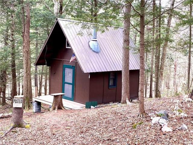 0 Soft Maple Road, Croghan, NY 13327 (MLS #S1330506) :: BridgeView Real Estate Services