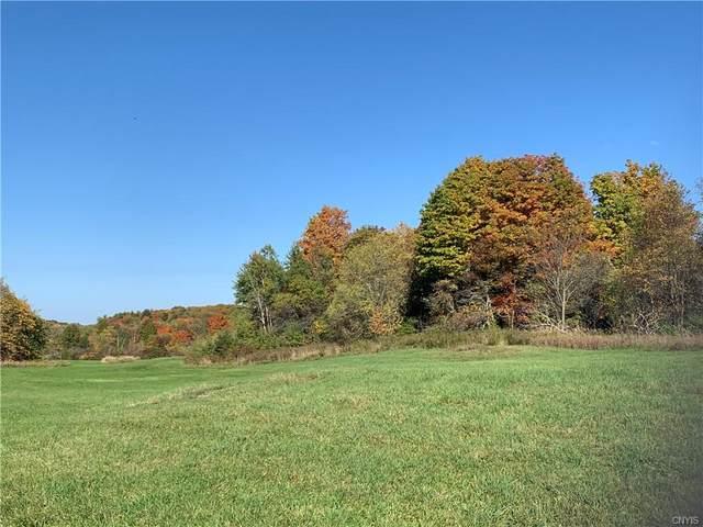 00 County Route 19, Hermon, NY 13652 (MLS #S1337266) :: Serota Real Estate LLC