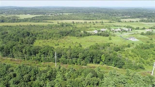 14 acres Crimson Court, Schodack, NY 12033 (MLS #S1339957) :: BridgeView Real Estate