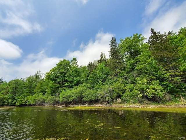 0 Old Town Springs Rd. Road E, Clayton, NY 13624 (MLS #S1341954) :: 716 Realty Group