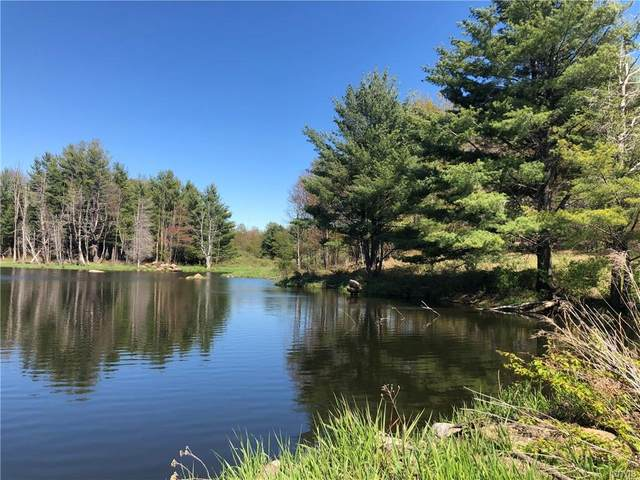 00 Berry Drive, Lorraine, NY 13659 (MLS #S1343951) :: BridgeView Real Estate Services