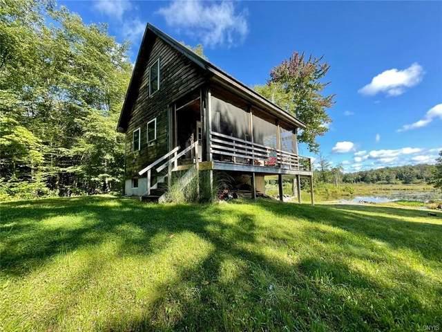 93 Lake Pennock Drive, Orwell, NY 13144 (MLS #S1345047) :: Serota Real Estate LLC